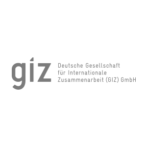 GIZ digital workplace collaboration