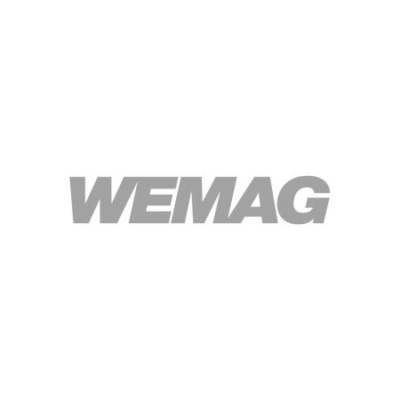 wemag-gmbh intelligent workplace collaboration